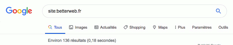 Recherche pages indexées Google