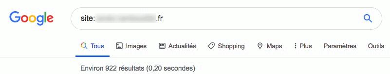 Recherche indexation sur google